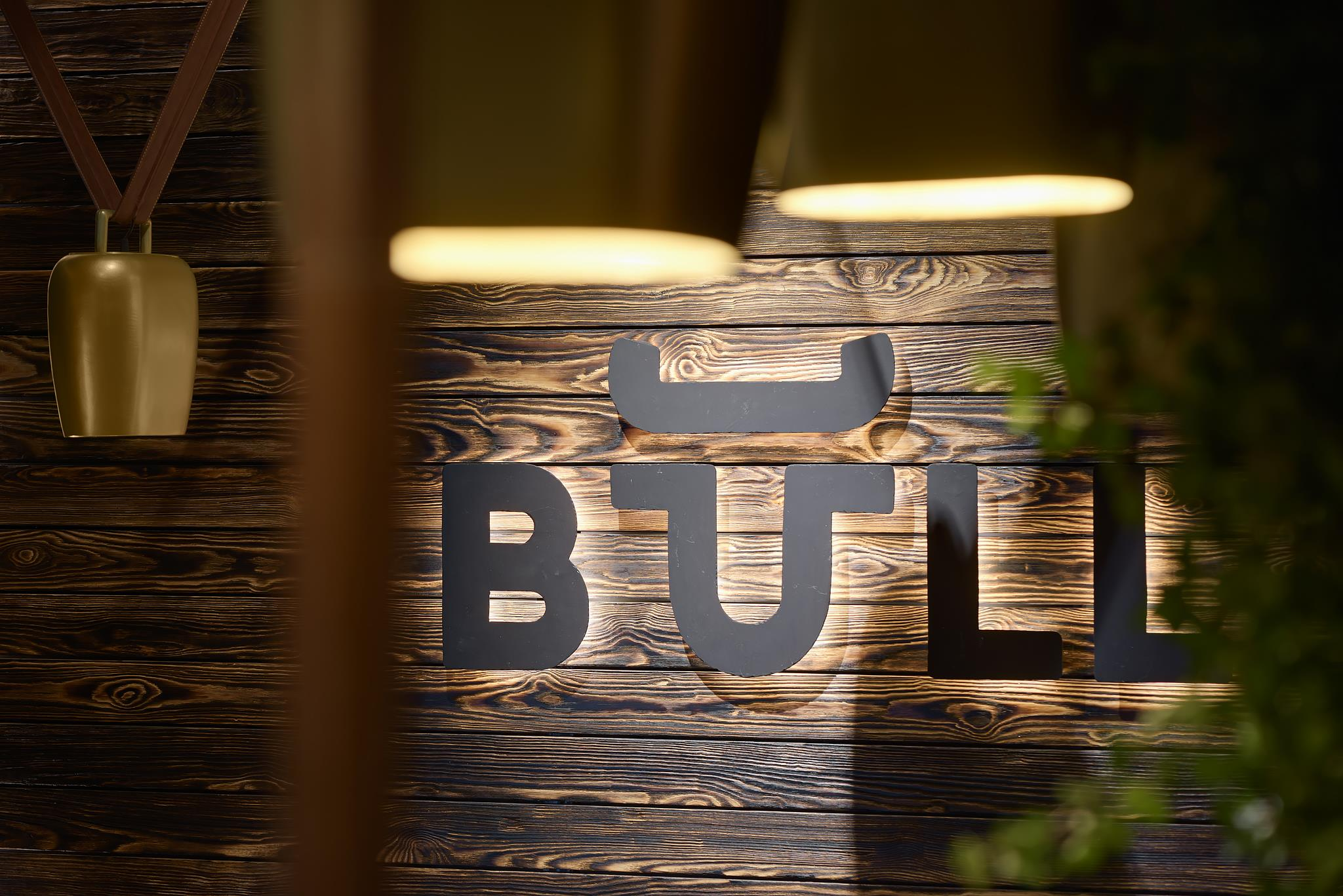 BULL_036